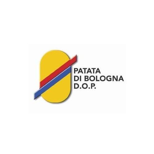 bologna-1612347866.jpg